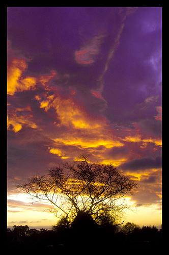 Fierce sky